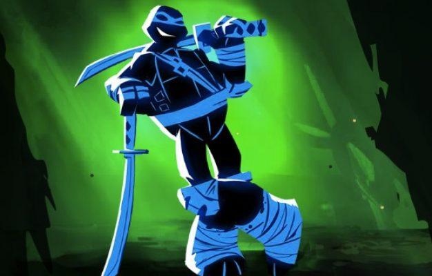 luptatori ninja