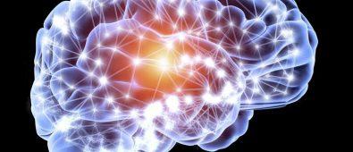 Creierul este cel care aduce frica pentru protectie